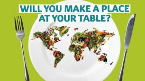 Harvest-2014-Will-you-make-a-place-at-your-table-banner-for-standard-pages_layout-large