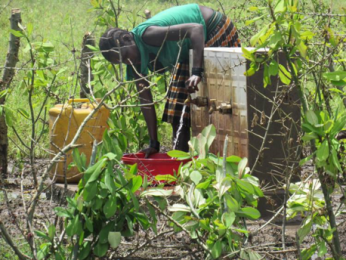 Elizabeth from Uganda using a water tap built with your donations from  Family Fast Day during Lent in 2016